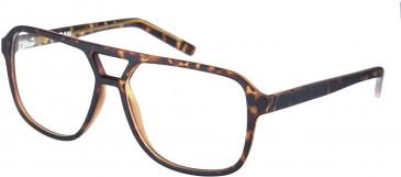 Farah FHO-1007 Glasses in Matte Tortoiseshell