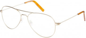 Farah FHO-1015 Glasses in Gold