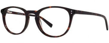 X Eyes 169 Glasses in Brown Demi