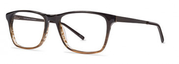 ZENITH 87-50 Glasses in Brown