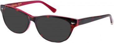 Superdry SDO-ALYSSA Sunglasses in Gloss Tortoise