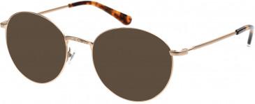 Superdry SDO-TEGAN Sunglasses in Matte Gold/Tortoise