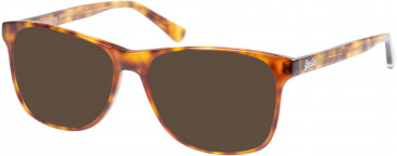 Superdry SDO-PATERSON Sunglasses in Gloss Tortoise