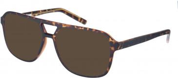 Farah FHO-1007 Sunglasses in Matte Tortoiseshell