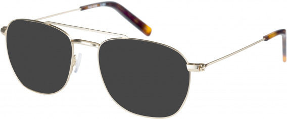 Farah FHO-1016 Sunglasses in Gold