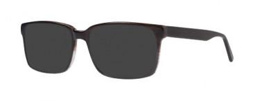 ZENITH 85-54 Sunglasses in Grey