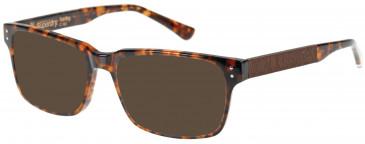 Superdry SDO-HARLEY Sunglasses in Gloss Tortoise