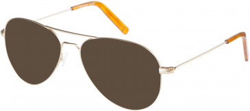 Farah FHO-1015 Sunglasses in Gold