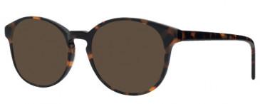 ZENITH 84 Sunglasses in Tort