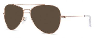 ZENITH 90 Sunglasses in Bronze