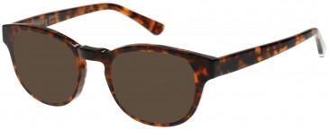 Superdry SDO-JONNY Sunglasses in Gloss Tortoise