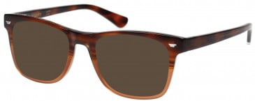 Superdry SDO-JONAH Sunglasses in Gloss Brown Horn Fade