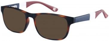 Superdry SDO-KABU Sunglasses in Matte Tortoise
