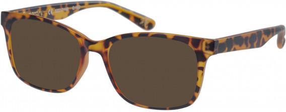 Superdry SDO-MAIKA Sunglasses in Matte Tortoise