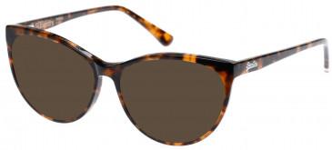Superdry SDO-NEKO Sunglasses in Gloss Tortoise
