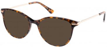 Superdry SDO-SHIKA Sunglasses in Gloss Tortoise