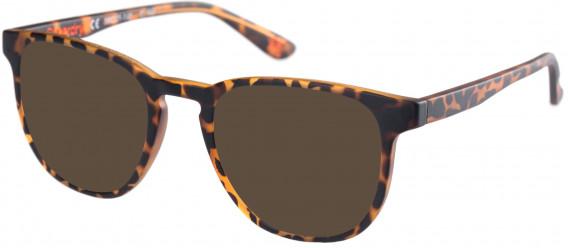 Superdry SDO-UNI Sunglasses in Matte Tortoise