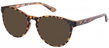 Superdry SDO-KATLYN Sunglasses in Matte Tortoise