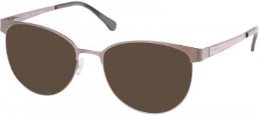 Radley RDO-ARMELLE Sunglasses in Taupe