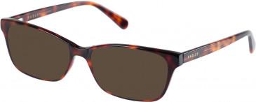 Radley RDO-CORINNE Sunglasses in Gloss Tortoise