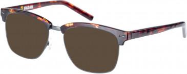 Farah FHO-1010 Sunglasses in Matte Tortoiseshell/Gunmetal