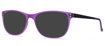 ZENITH 81-50 Sunglasses in Purple
