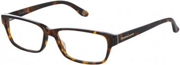 Christian Lacroix CL1042 Glasses in Tortoiseshell