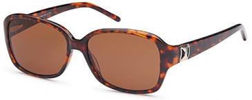 SFE-9666 Sunglasses in Havana