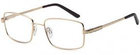 SFE-10077 6040 glasses in Gold