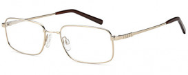 SFE-10081 FOS210 glasses in Gold