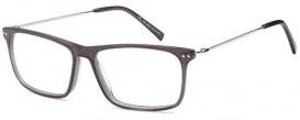 SFE-10054 DEL132 glasses in Grey