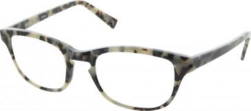 Andrew Actman HOATZIN glasses in Tortoiseshell Grey