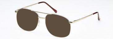 SFE-10222 sunglasses in Matt Gold