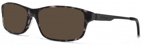 Animal ANIS003 Sunglasses in Black Tortoiseshell