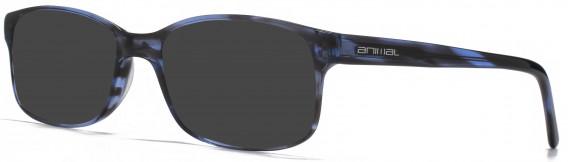 Animal ANIS016 Sunglasses in Blue Tortoiseshell