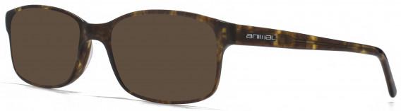 Animal ANIS016 Sunglasses in Tortoiseshell