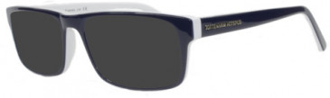 Tottenham Hotspur OTH005 sunglasses in Blue/White