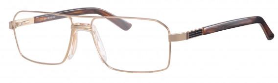 Ferucci 965 Glasses in Gold