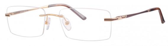 Ferucci Titanium 672 Glasses in Gold