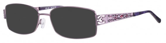 Ferucci 1741 Sunglasses in Purple