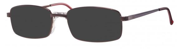 Visage 395 Sunglasses in Bronze