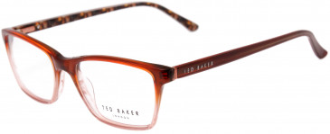 Ted Baker TB9095 glasses in Brown Gradient