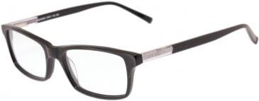 Ted Baker TB8113 glasses in Black