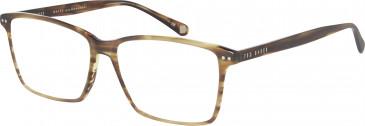 Ted Baker TB8119 glasses in Amber Horn