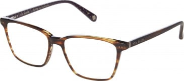 Ted Baker TB8145 glasses in Amber Horn