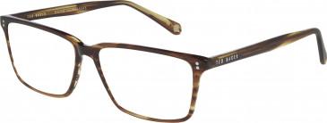 Ted Baker TB8152 glasses in Amber Horn