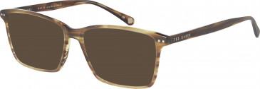 Ted Baker TB8119 sunglasses in Amber Horn