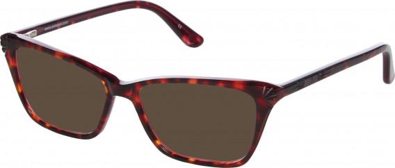Anna Sui AS502 sunglasses in Tortoiseshell Burgundy