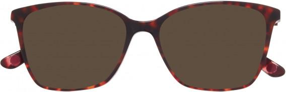 Anna Sui AS5035 sunglasses in Tortoiseshell Burgundy