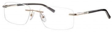 Ferucci FE2014 glasses in Gold